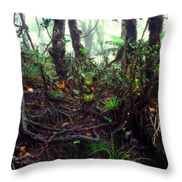 Misty Rainforest El Yunque Throw Pillow by Thomas R Fletcher