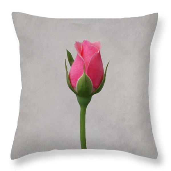 Pink Rosebud Throw Pillow by Sandy Keeton