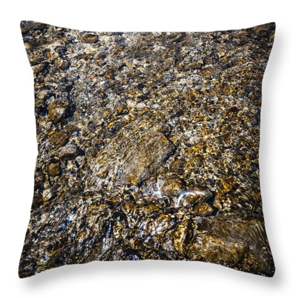 Rocks in water Throw Pillow by Elena Elisseeva