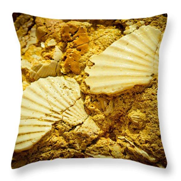 Seashell in stone Throw Pillow by Raimond Klavins