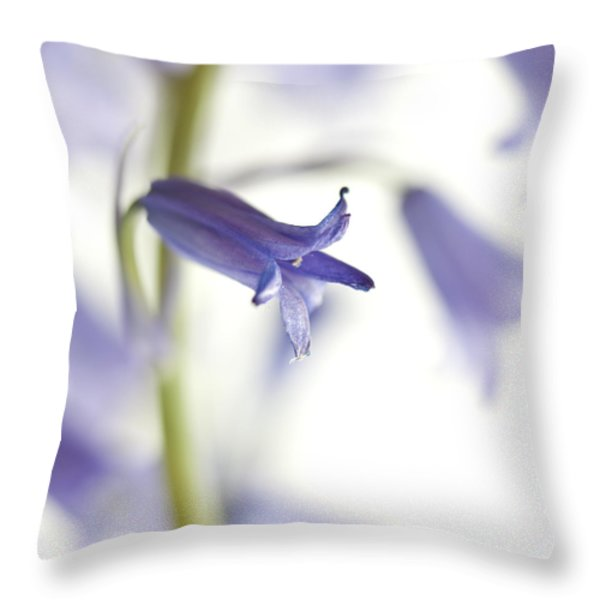 Spring Bluebells Throw Pillow by Carol Leigh