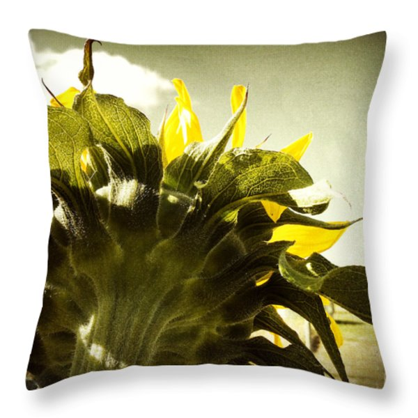 Sunflower Throw Pillow by Les Cunliffe