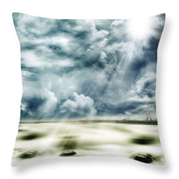 Sunlight Throw Pillow by Les Cunliffe