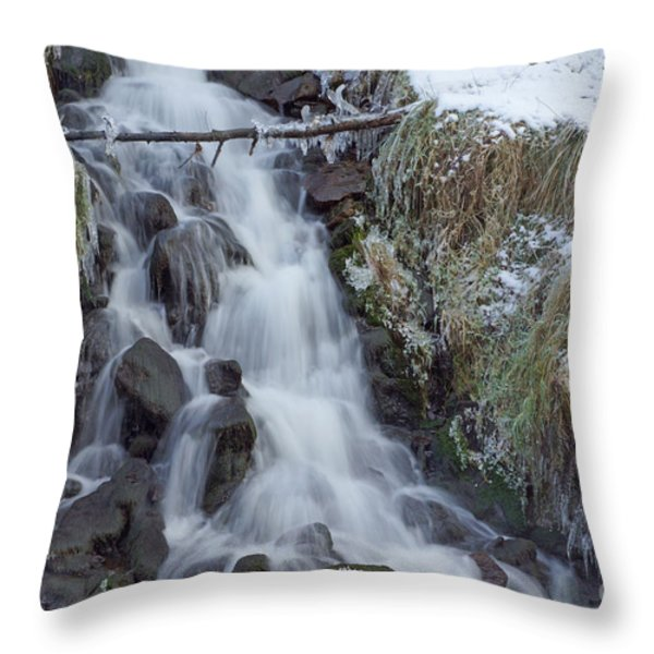 Winter Waterfall Throw Pillow by David Birchall