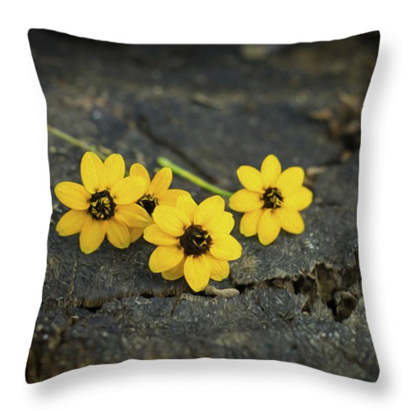 3 Yellow Flowers Throw Pillow by Aged Pixel