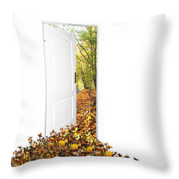 Door To New World Throw Pillow by Michal Bednarek
