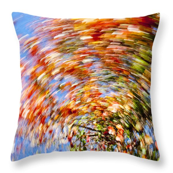 fall abstract Throw Pillow by Steven Ralser