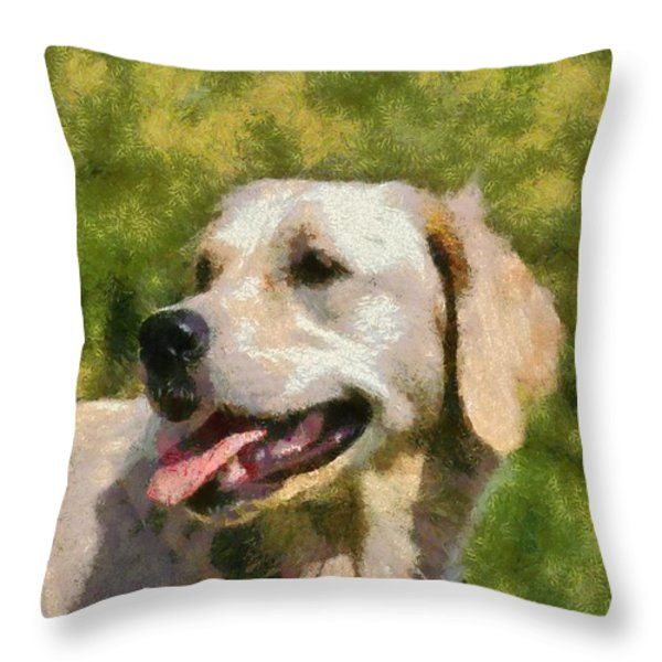 Golden Retriever Portrait Throw Pillow by George Atsametakis