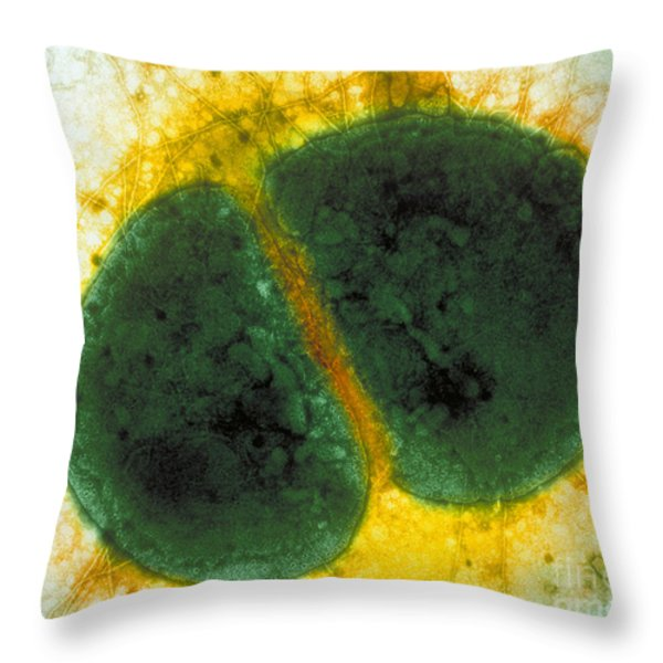 Neisseria Gonorrhoeae Throw Pillow by Kwangshin Kim