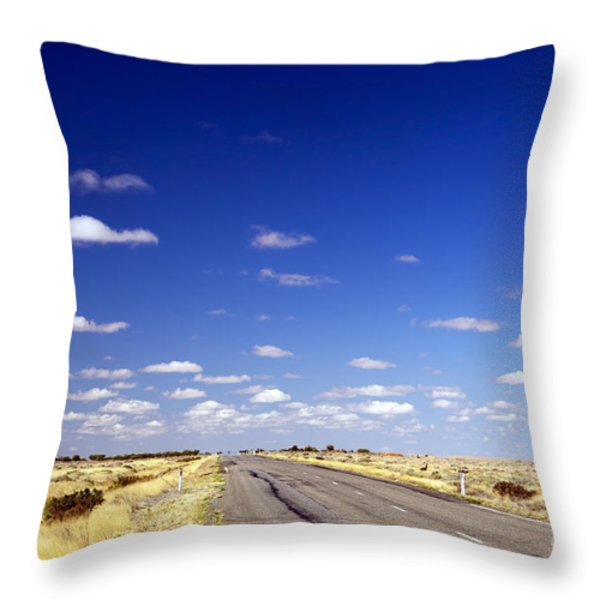 Road Ahead Throw Pillow by Tim Hester