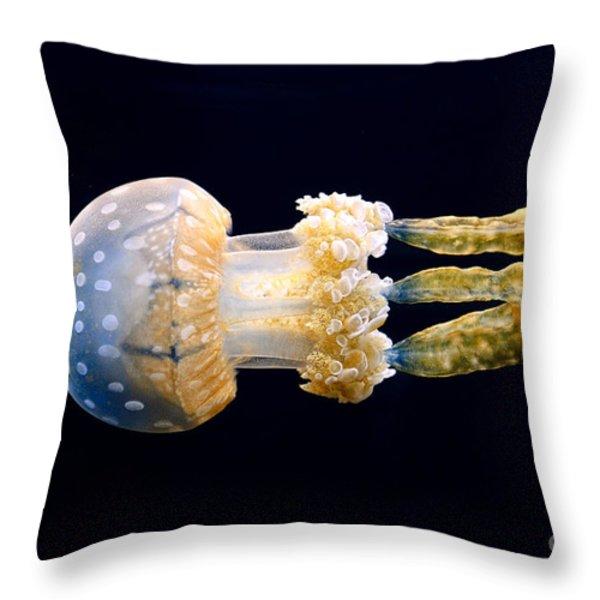 The Spotted Jelly Or Lagoon Jelly Mastigias Papua. Throw Pillow by Jamie Pham