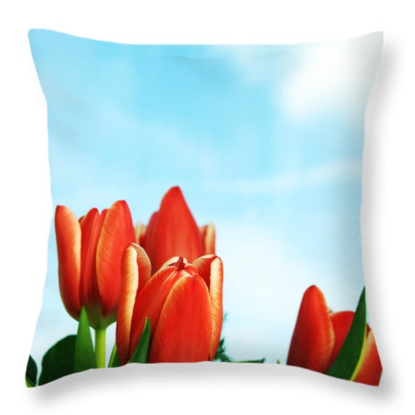 Tulips Background Throw Pillow by Michal Bednarek