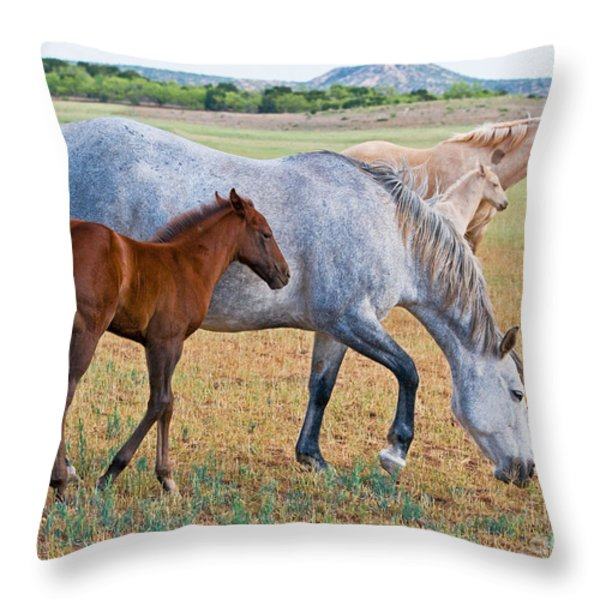 Wild Horse Mother And Foal Throw Pillow by Millard H Sharp