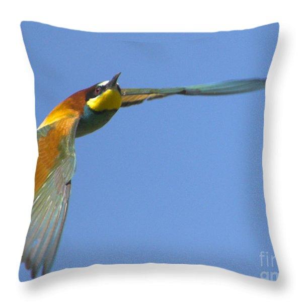 Abejaruco Throw Pillow by Guido Montanes Castillo