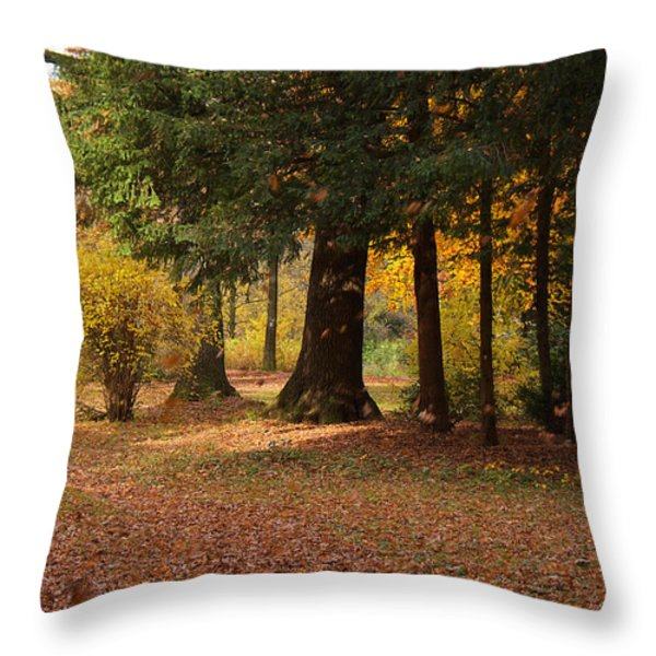 Autumn Throw Pillow by Angela Doelling AD DESIGN Photo and PhotoArt