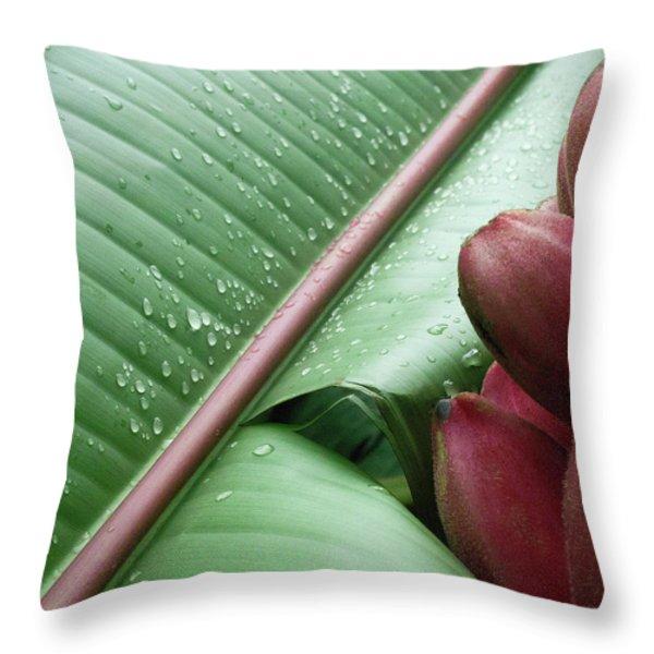Banana Leaf Throw Pillow by Heiko Koehrer-Wagner