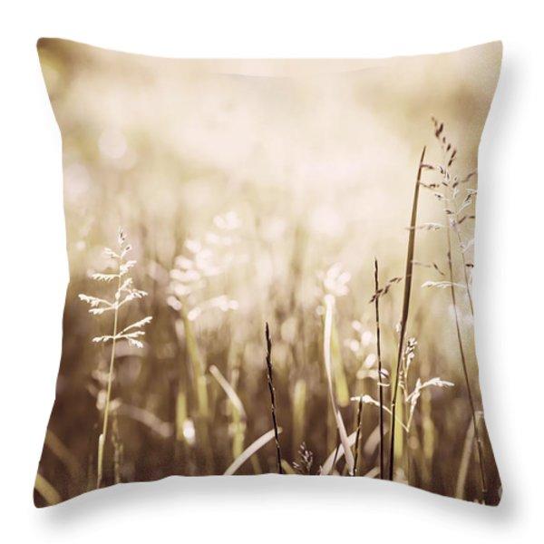 June grass flowering Throw Pillow by Elena Elisseeva