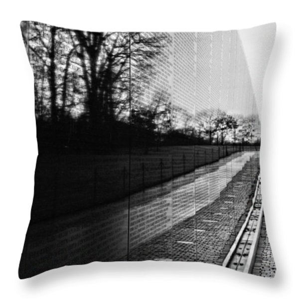 58286 Throw Pillow by JC Findley