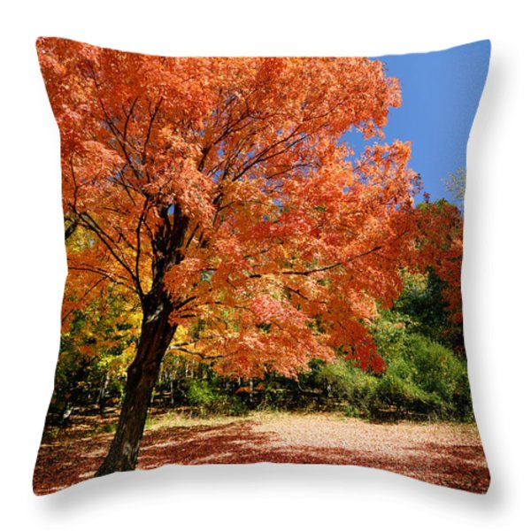 A Blanket Of Fall Colors Throw Pillow by Amy Cicconi