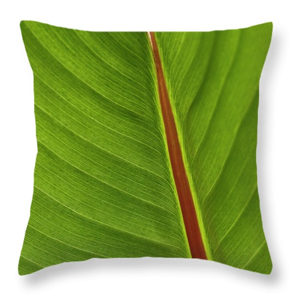 Banana Leaf Throw Pillow by Heiko Koehrer-Wagner