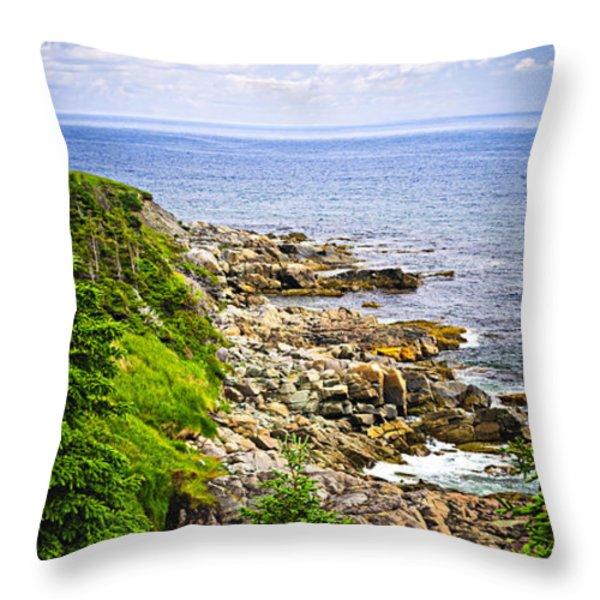 Atlantic coast in Newfoundland Throw Pillow by Elena Elisseeva