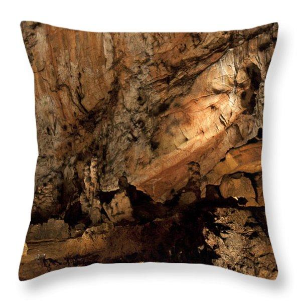 Baradla Throw Pillow by Daniel Csoka