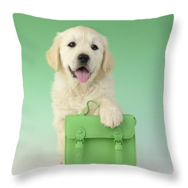 9 To 5 Labrador Throw Pillow by Greg Cuddiford
