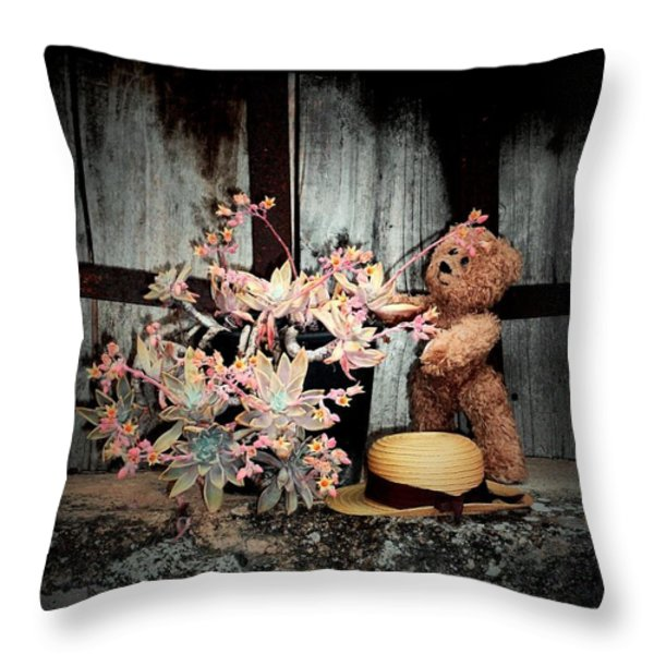 A beautiful spring evening Throw Pillow by Donatella Muggianu
