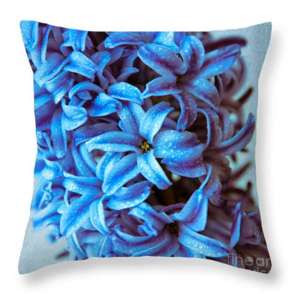 A Beauty In Blue Throw Pillow by Hannes Cmarits