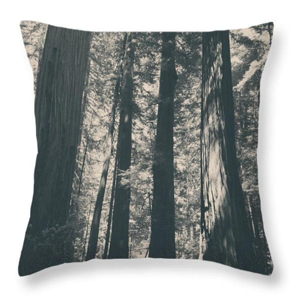 A Breath Of Fresh Air Throw Pillow by Laurie Search