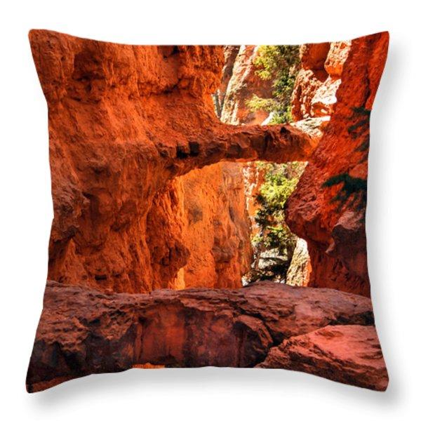 A Bridge Throw Pillow by Robert Bales