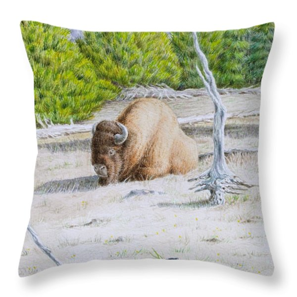 A Buffalo Sits in Yellowstone Throw Pillow by Michele Myers