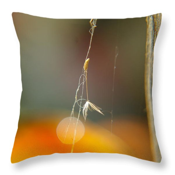 A Captured Dandelion Seed Throw Pillow by Jeff Swan