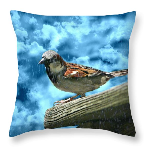A Chance Of Showers Throw Pillow by Barbara S Nickerson
