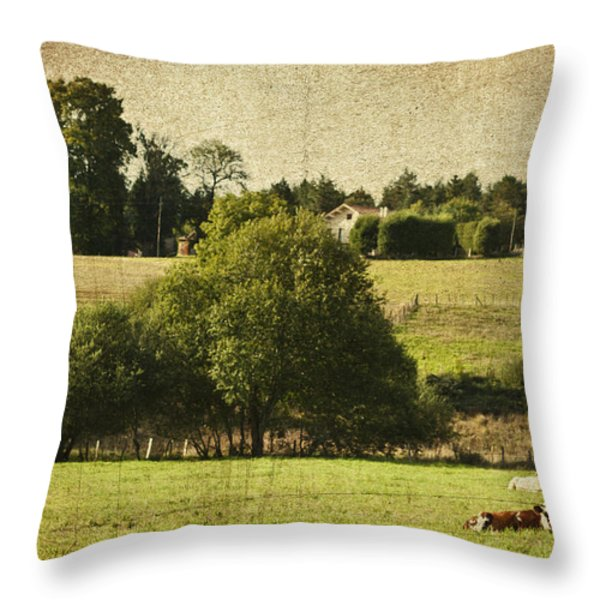 A French Country Scene Throw Pillow by Nomad Art And  Design