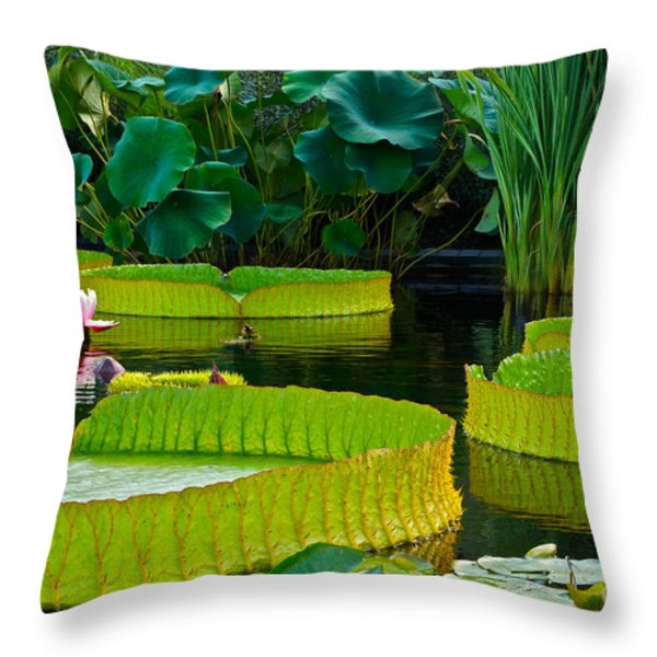 A Garden In Gentle Waters Throw Pillow by Byron Varvarigos