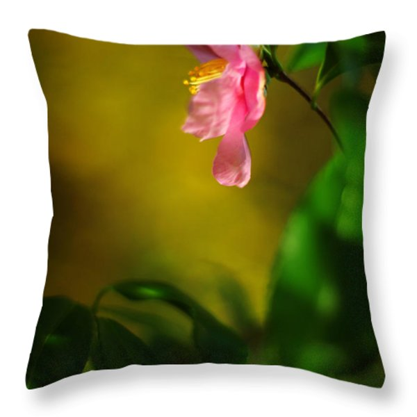 A Golden Day Portrait Of A Pink Camellia Throw Pillow by Rebecca Sherman