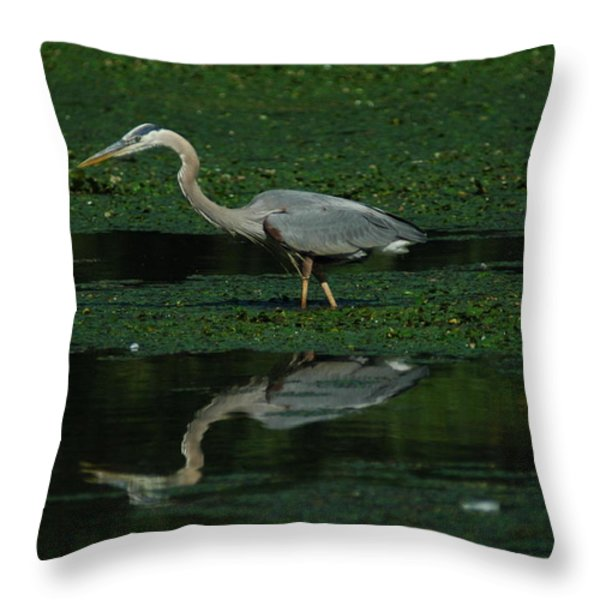 A Heron Hunting Throw Pillow by Raymond Salani III