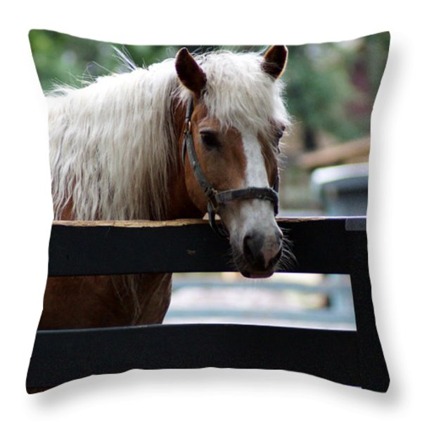 A Hilton Head Island Horse Throw Pillow by Kim Pate