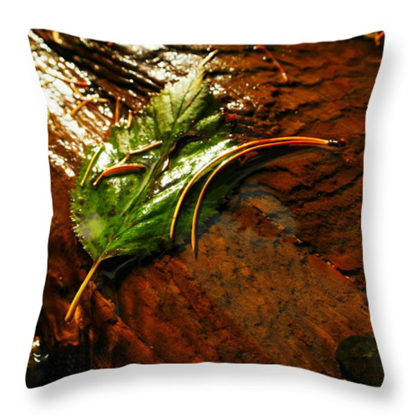 A LEAF WASHED OVER Throw Pillow by Jeff  Swan