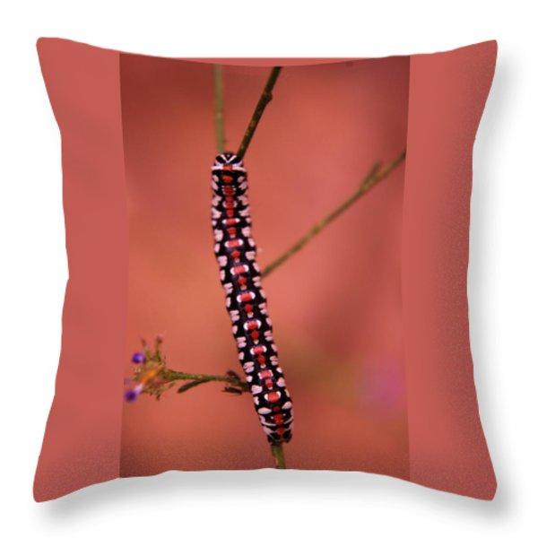 A LITTLE CATERPILLAR Throw Pillow by Jeff  Swan