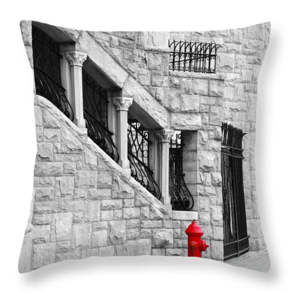 A Little Red Throw Pillow by Randi Grace Nilsberg