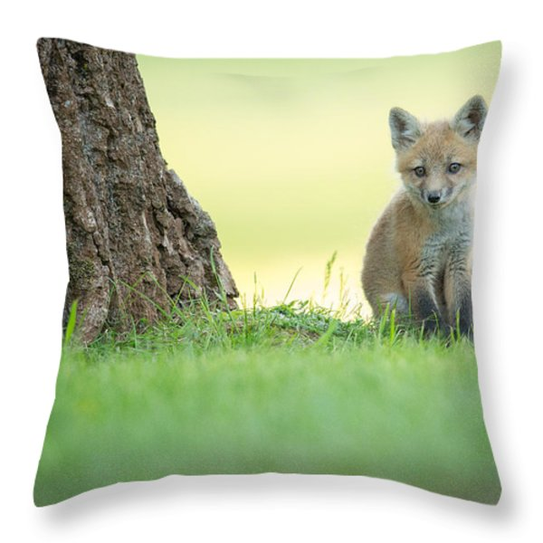 A lone kit Throw Pillow by Everet Regal