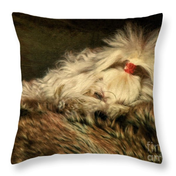 A Long Winter's Nap Throw Pillow by Lois Bryan