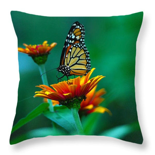 A Monarch Throw Pillow by Raymond Salani III