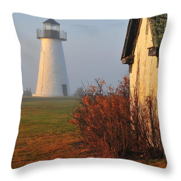 A Morning Fog Throw Pillow by Catherine Reusch  Daley