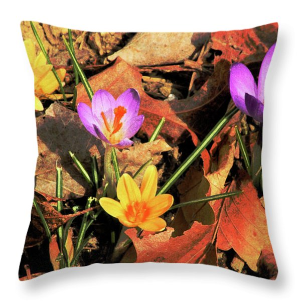 A New Season Blooms Throw Pillow by Karol  Livote