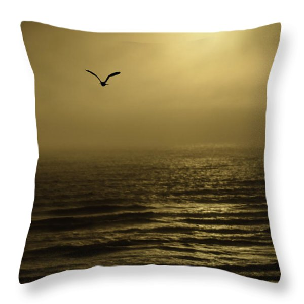 A Newport Oregon Sunset Throw Pillow by Diane Schuster