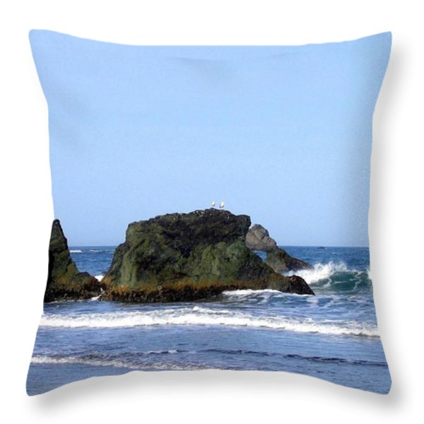 A Pair Of Seagulls On A Rock Throw Pillow by Will Borden