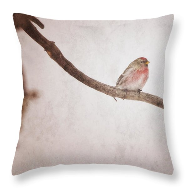 A Redpoll Bird On The Branch Of A Pine Throw Pillow by Roberta Murray